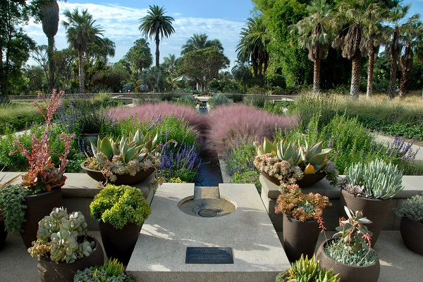The No Sacrifice Low Water California Garden